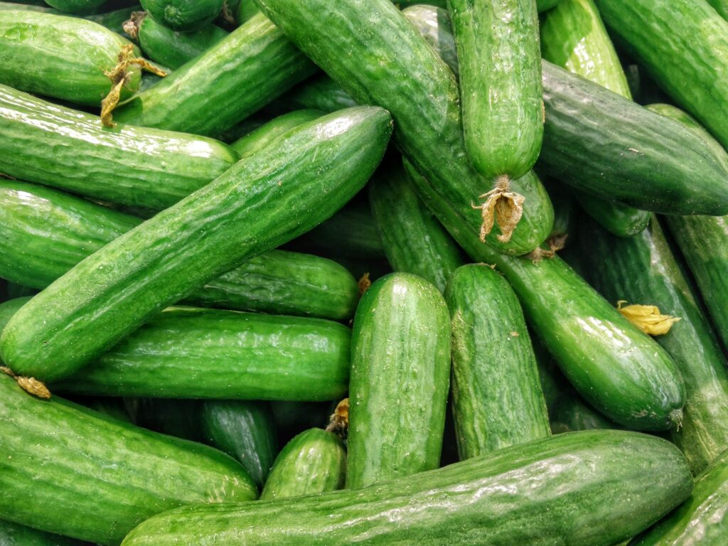 cucumber as a low calorie vegetable good for weight loss