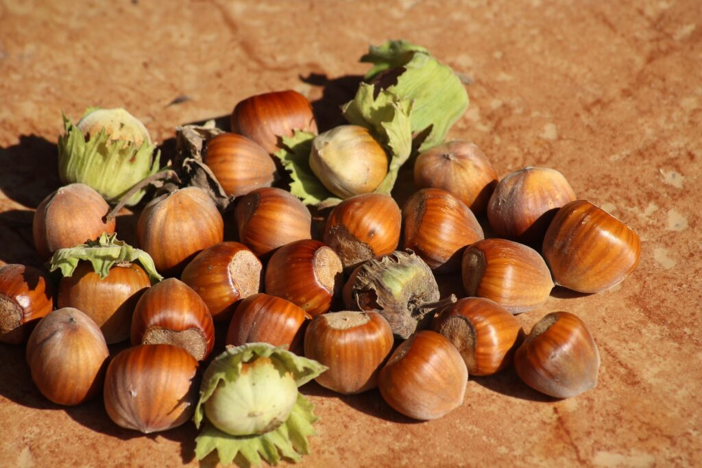 Are hazelnuts good for losing weight