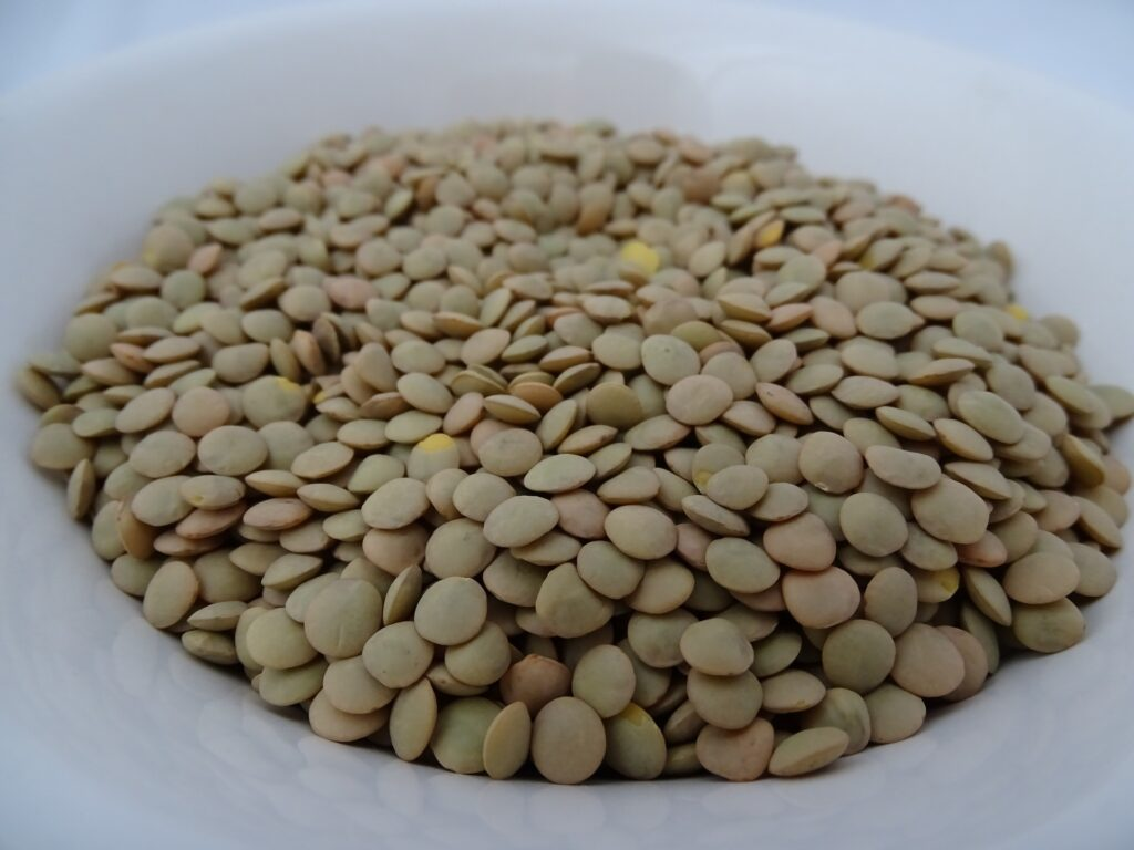 Bowl of lentils to eat for weight loss