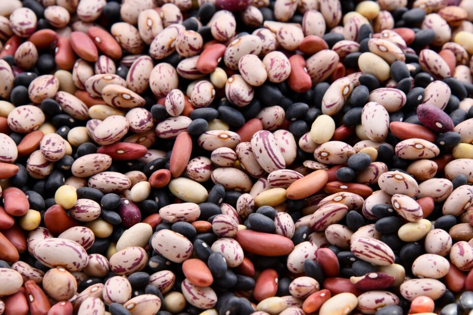 14 Of The Beans Highest In Protein