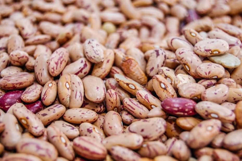Are Pinto Beans Keto-Friendly (& Substitutes)
